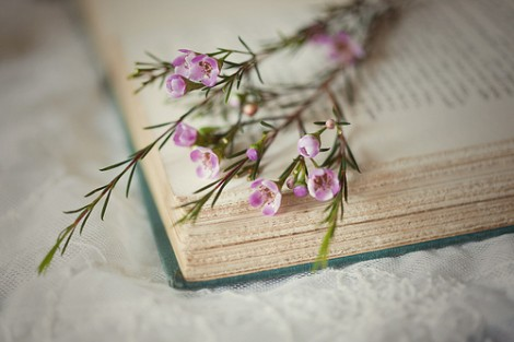 Bizim Hiç Eskimeyen Modamız Kur'ân ve Sünnettir…