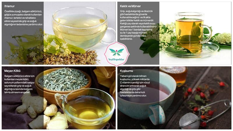 Soğukalgınlığı-İçin-En-İyi-Bitkisel-Tedavi-Yöntemleri
