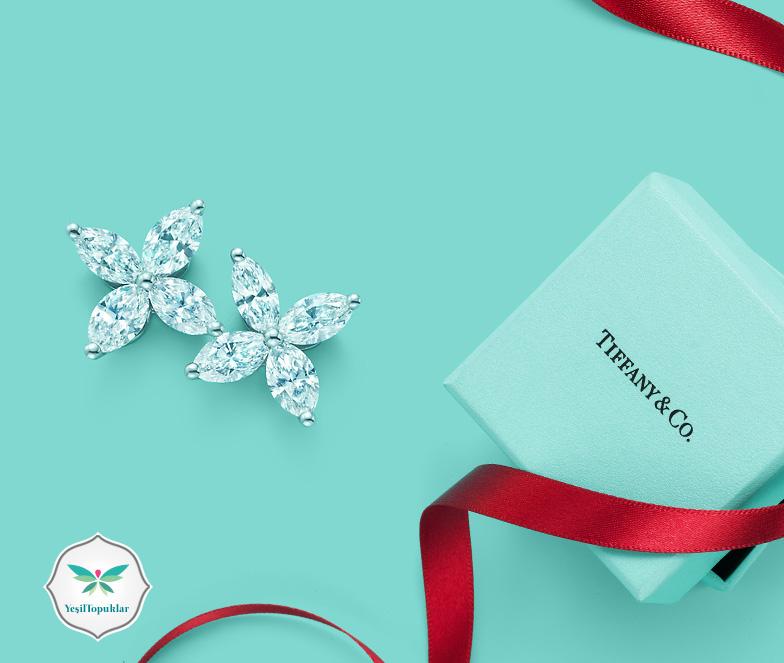 Tiffany-&-Co-Takı-Aksesuar-Modelleri