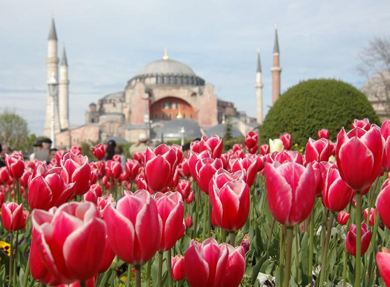 İstanbul'da-Lale-Zamanı