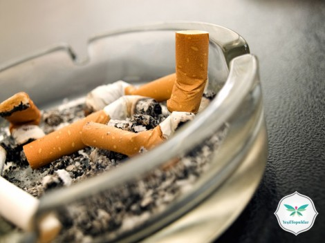 Sigaranın Sağlığımıza Zararları