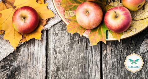 Sonbahara Uygun Diyet listesi ve Beslenme Önerileri