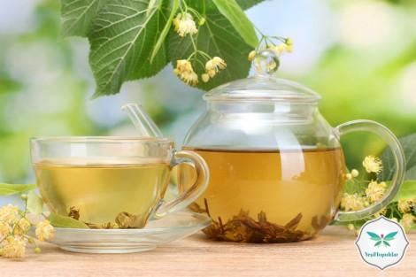 Sonbaharda İçilmesi Gereken Bitki Çayları ve Faydaları