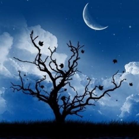 Muharrem Ayı Nasıl Birinci Ay Olarak Tespit Edildi