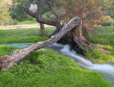 Haftasonu Lüksü Doğa ile İçiçe Olmak!