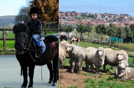Haftasonu Gezi Önerisi Göçmen Ranch Binicilik Tesisleri
