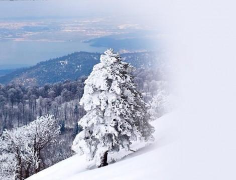 Muhafazakar Kayak Oteli Kartepe Yazıcılar Otel