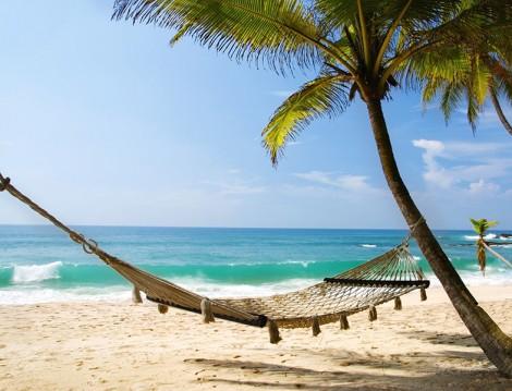 Tatil Planları