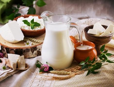 Yağ Yakımını Hızlandıran Besin Süt ve Süt Ürünleri