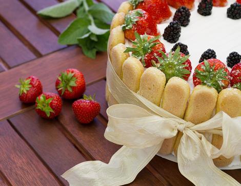 Kedidili Bisküvili Yaş Pasta Tarifi