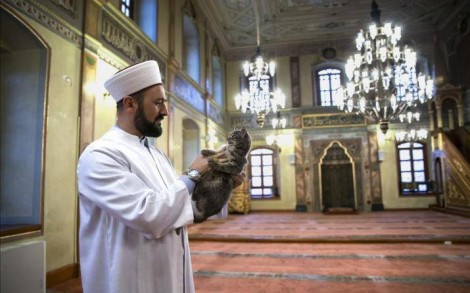 Aziz Mahmud Hüdayi Cami İmamı