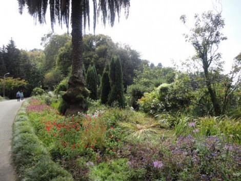 Botanik Bahçesi Batum