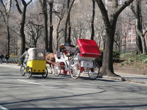 Central Park ABD