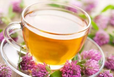 Lavanta-Çayının-Faydaları-Nelerdir