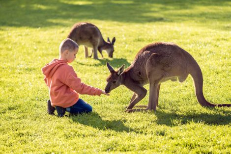 Çocuklarla Gidilebilecek tatil Yerleri (8)