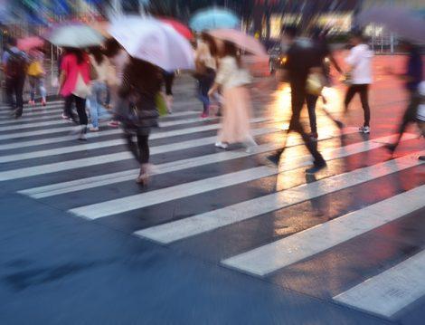 İnsan Türü Yok Olma Tehlikesiyle Karşı Karşıya