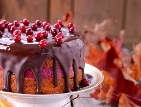 Yazdan Kalma Kızılcık Meyvesi Olanlara Nefis Bir Pasta