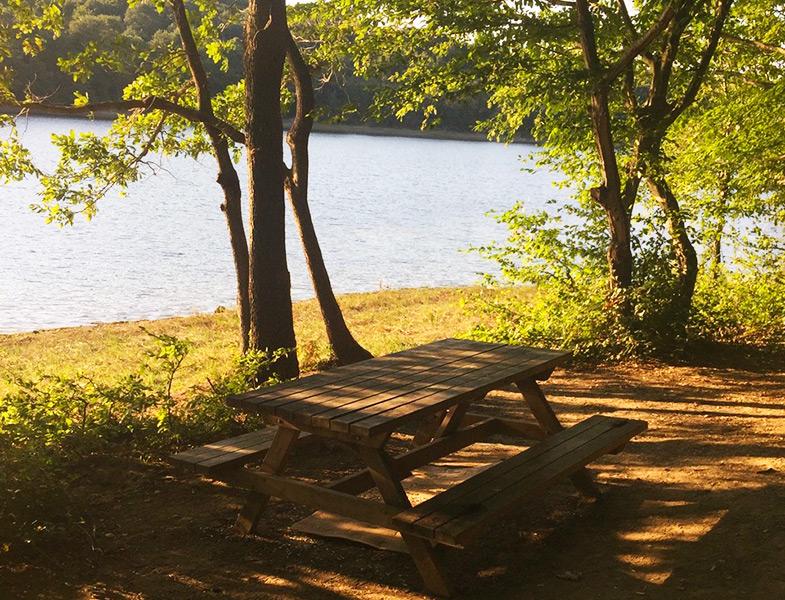 İlkbaharda Mutlaka Keşfetmeniz Gereken Piknik Mekanları