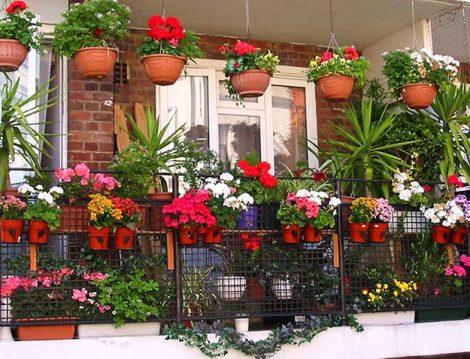 Balkon ve Terasları Yeşillendirme Zamanı