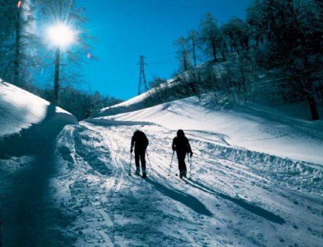 Yarıyıl Tatilinde Kayak Keyfi Yapabileceğiniz En İyi Alkolsüz Oteller
