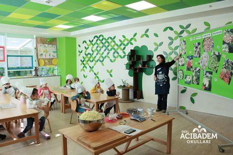 Özel Acibadem Okulları
