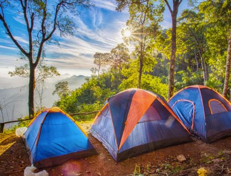 Kamp Alanları