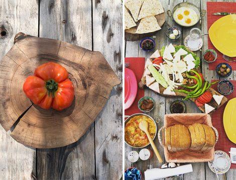 Çiftlikköy Organik Yaşam Köyü Dalından Sebzelerle Kahvaltı