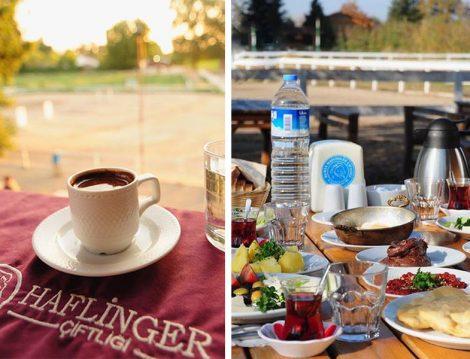 Haflinger At Çiftliği Kahvaltı