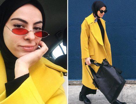 Sarı Kaban Modeli