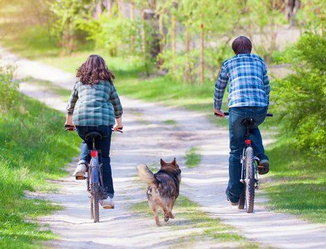 Sağlıklı Yaşam İçin Bisiklet Binmek