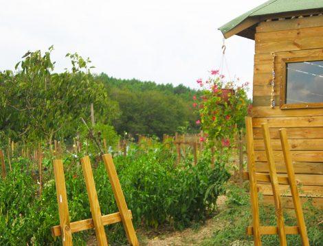 Cavidan Hanım Çiftliği