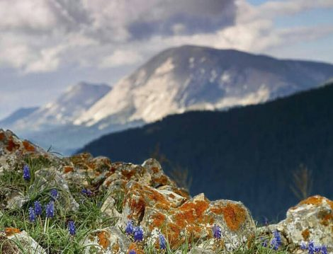 Ilgaz Dağı Çankırı