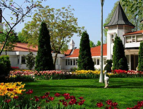 Beykoz Korusu Lale Bahçeleri