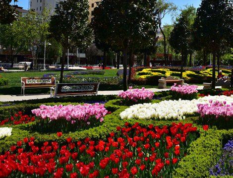 Göztepe 60. Yıl Parkı Lale Bahçeleri