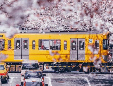 Japonya Metro ve Ulaşım