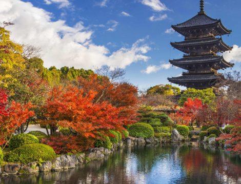 Muhafazakar Kültür Turları Japonya Turu