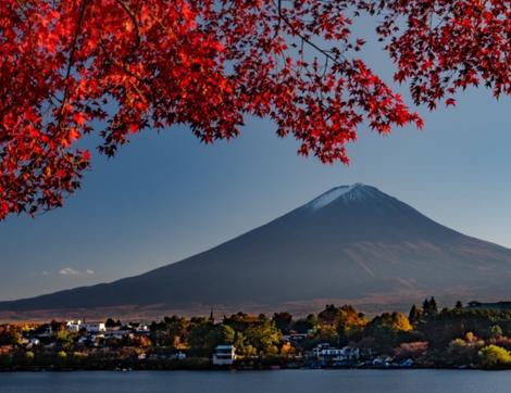 Japonya'nın Koyo Zamanı Güzelliğine Tanık Olun