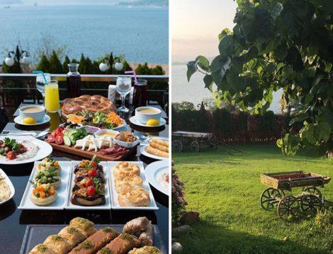 Beykoz Alkolsüz Mekanlar Shubra Cafe