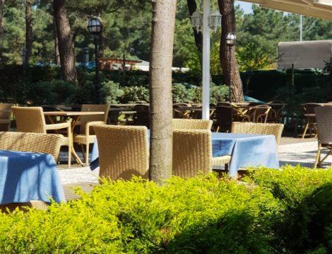 Orman Cafe ve Restoran