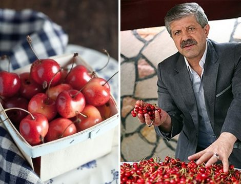 Dr. Ahmet Maranki Kiraz Detoksu İle Ruhsal ve Bedensel Arınma