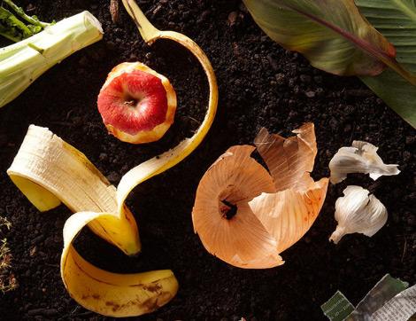 Kabuğu da En Az Kendisi Kadar Faydalı 7 Meyve&Sebze ve Kuruyemiş
