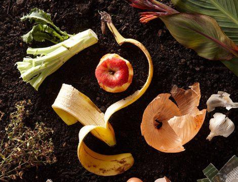 Sebze ve Meyve Kabuklarının Faydaları