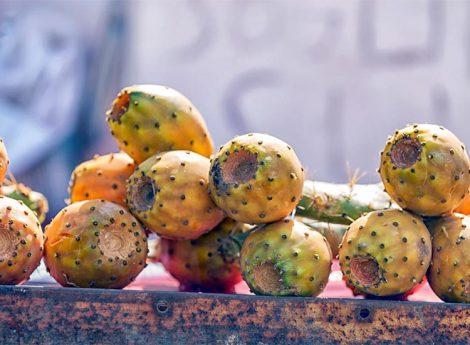 Babutsa Meyvesi